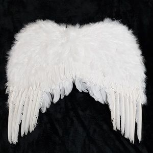 Angel wings costume